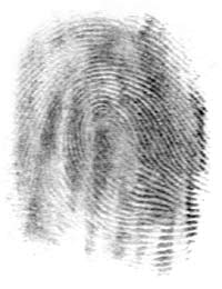 The same fingerprint as it would be detected on a surface.