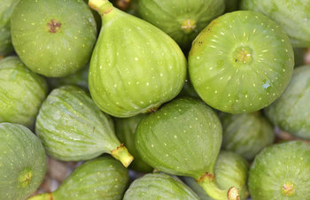 Green Fig Fruit. Photo provided by Classroom Clip Art (http://classroomclipart.com)