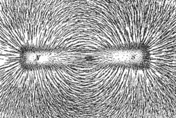 Magnetic field lines emanate primarily from the north pole of a magnet and curve around to the south pole